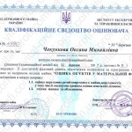 chekunkova1