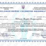 shevchenko 2